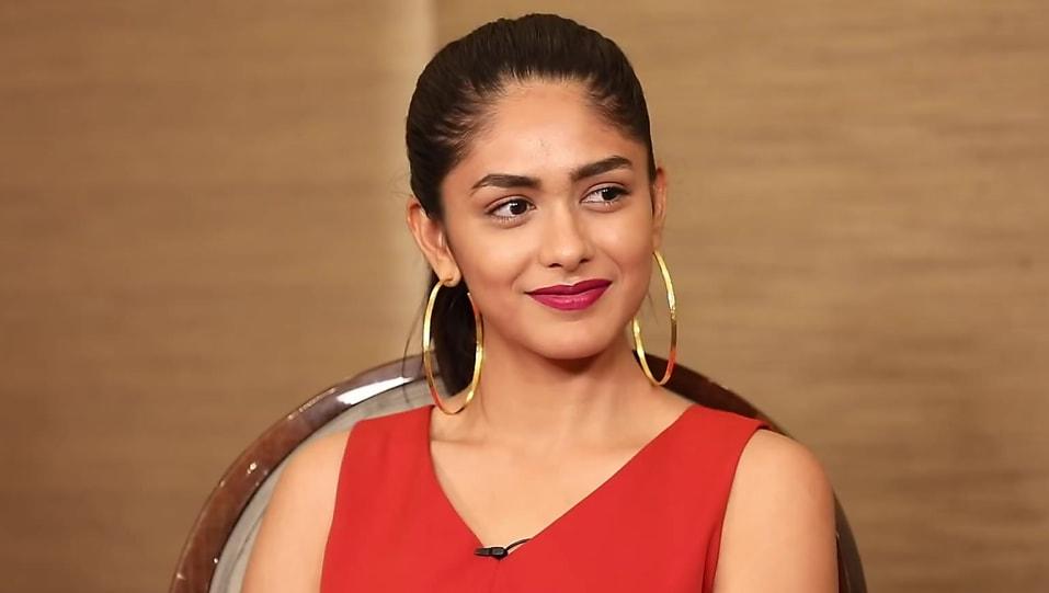 Jersey Remake : Mrunal Thakur to play female lead